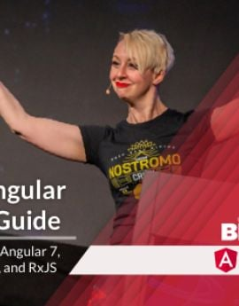 Angular Field Guide Training