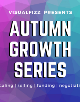 visualfizz chicago growth series